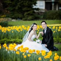 pre-wedding (177)