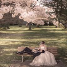 pre-wedding (46)