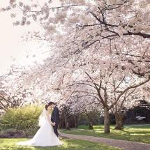 pre-wedding (49)